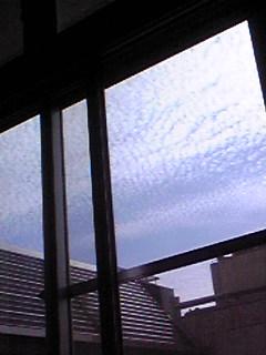 病室の窓から。。。